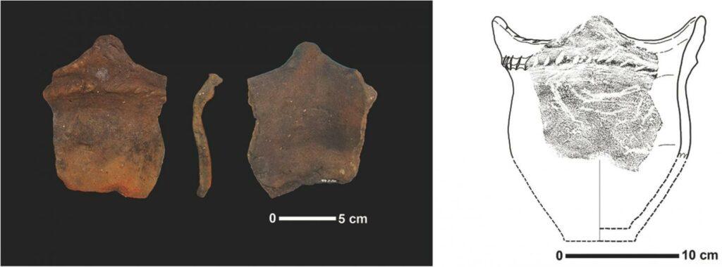 Keramikscherbe mit dem Abdruck eines Maiskäfers.