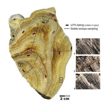 Aufnahme des Stalagmiten. Deutlich sind die Wachstumsphasen anhand der unterschiedlichen Gelb-, Ocker- und Brauntöne zu erkennen und die sich in einzelnen Schichten ablagern.