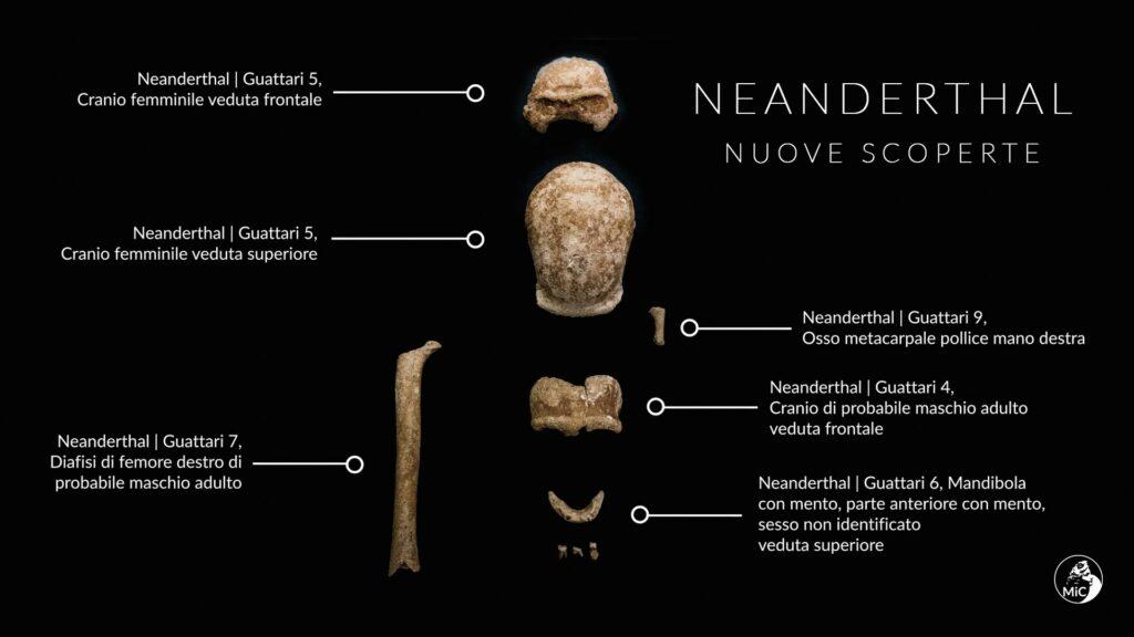 Funde aus der Guttari Höhle. Skelettreste der neun Individuen.