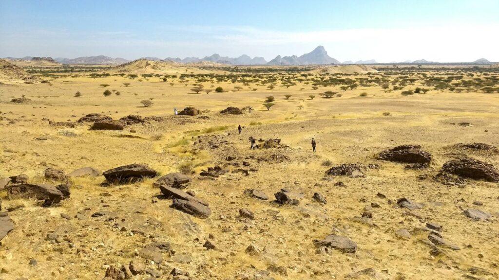 Das Foto zeigt die Überreste von Qubbas (Gräber mit Kuppeldächern) um den Jebel Maman. Die Gräber befinden sich in einer weitläufigen Graslandschaft und sind in Gruppen angeordnet, die auf ein bestimmtes Verteilungsmuster hindeuten.