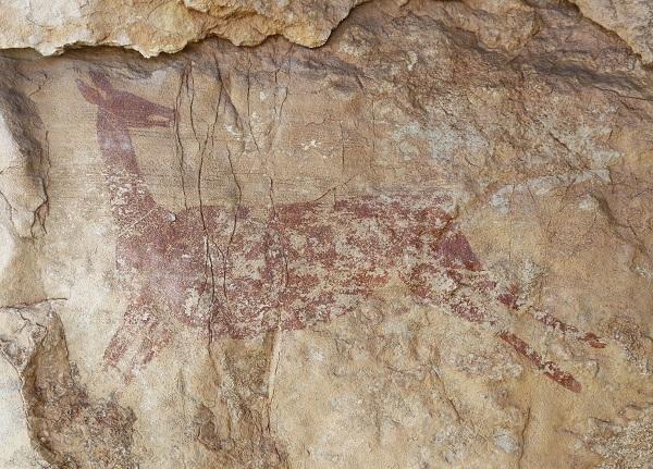 Die Wandmalerei zeigt wahrscheinlich ein Reh. Dieses scheint gerade zu laufen. Den Kopf hat es nach rechts gewandt und schaut somit hinter sich.